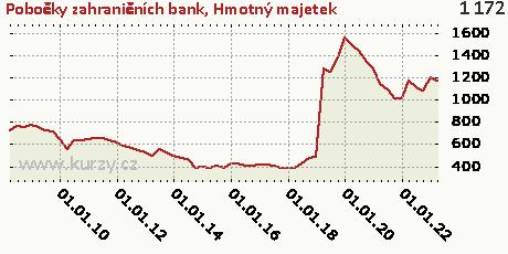 Hmotný majetek,Pobočky zahraničních bank