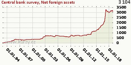 Net foreign assets,Central bank survey