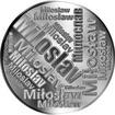 Česká jména - Miloslav - velká stříbrná medaile 1 Oz