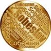 Česká jména - Soběslav - velká zlatá medaile 1 Oz