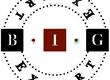 Logo BIG EXPERT