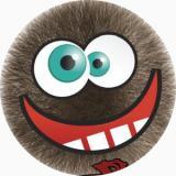 Logo FuzzBalls