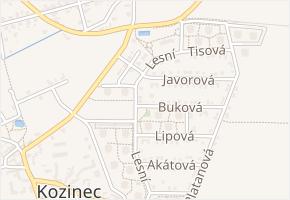 Buková v obci Holubice - mapa ulice