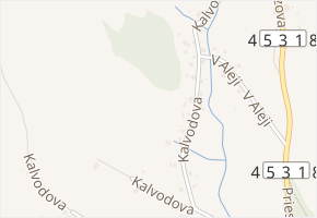 Kalvodova v obci Jeseník - mapa ulice
