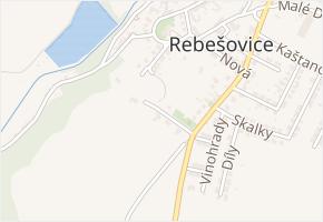 Stráně v obci Rebešovice - mapa ulice