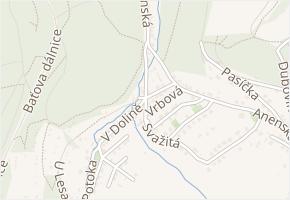 V Dolině v obci Zlín - mapa ulice