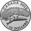 10 dolarů Stříbrná mince Fotografická soutěž - Kanadská geografie PP