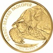 Zlatá mince Homopus areolatus  - Želva