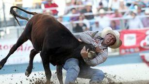 Co býka nezabije, to ho posílí