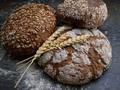 Žito jako zdroj biologicky aktivních látek
