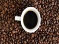 Káva se pěstuje v tzv. kávovém pásu