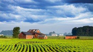 Investiční večer: Zemědělská půda bude zdražovat dalších 10 let