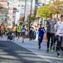 Vinařský půlmaraton 2019
